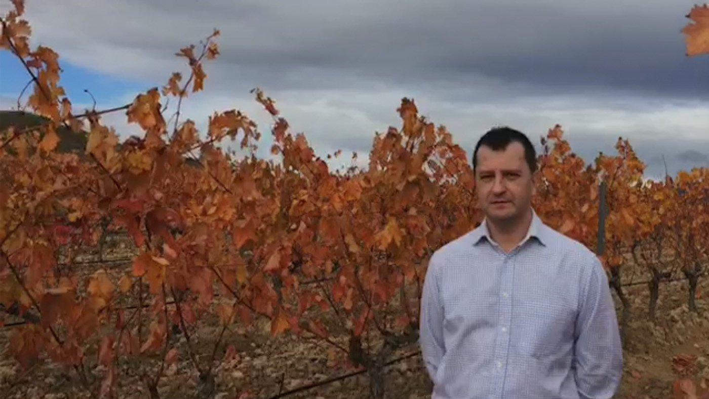 Video del Enologo de bodegas y hotel Eguren Ugarte. Vistas de las viñas ya rojizas con la bodega y la sierra Cantabria de fondo.