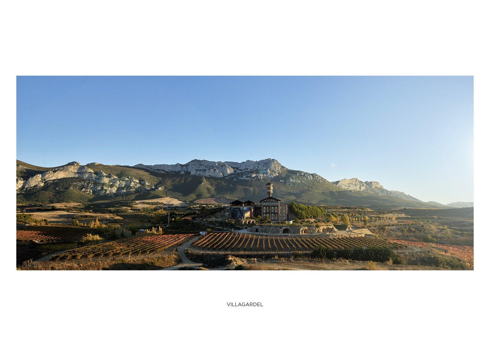 Viñedos de la bodega hotel Eguren Ugarte en Laguardia.