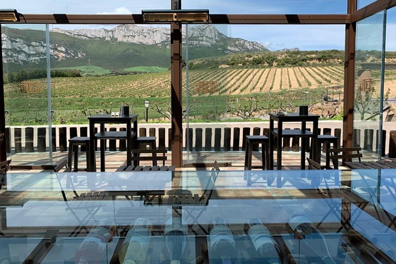 Terraza vistas viñedos. Bodega Álavesa en Laguardia sierra cantabria